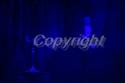 _DSC2695.jpg